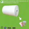 170~320gsm PE coated cup paper