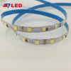 Best selling white color DC12V SMD 2835 72leds