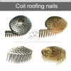 Roofing coil nail wire coil nail