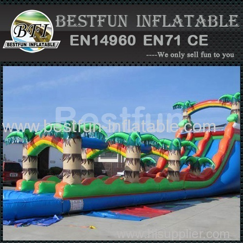 Dual long tropical inflatable water slide
