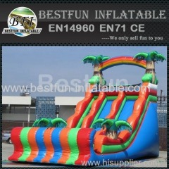 dual dry inflatable slide