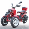 50cc Three-Wheel Ruckus Style Trike Scooter Moped