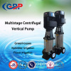 G-CDL/CDLF Multistage Centrifugal Vertical Pump 4-22