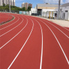9mm 13mm Prefabricated Runway Manufacturer Pro Athletic Track