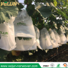 China supplier Grape protection bag nonwoven 100%PP ecology friendly