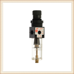 XFRU4 Filter Pressure Regulator