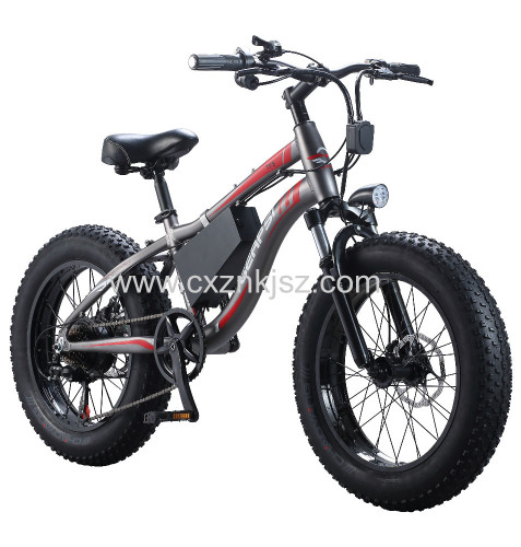 Electric Snow Bike Bicycle