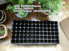 72 cell plastic tree seed tray 540*280*90mm
