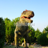 HC-Water park equipment robotic dinosaur for sale
