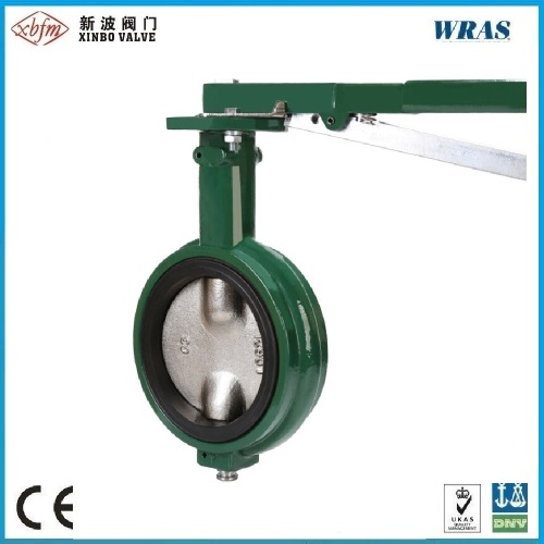 Wafer Type Pinless Backed Seat Butterfly Valve