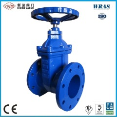 BS5163 Ductile Iron Resilient Seated Gate Valve