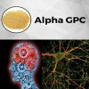 Powder Choline Glycerophosphate Alpha GPC 28319-77-9 for Enhance Memory