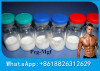 99% Purity Freeze-Dried White Powder Peptides Hormones PEG-MGF For Bodybuilding