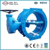 Cast Iron / Ductile Iron Double Offset Butterfly Valve