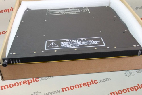 TRICONEX 8312 230VAC Power Modul 8312 Redundant