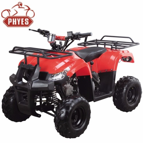 phyes 125cc quad atv with CE