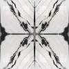 White Marble Black and White Marble Tiles in Hot Sale J-17