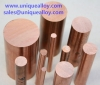 CuCo1Ni1Be CW103C Cobalt Nickel Beryllium Copper Bar