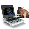 Veterinary laptop full digital ultrasound diagnostic;pet ultrasound machine