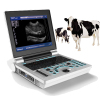 High resolution Veterinary Black and White ultrasound scanner