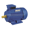 KOREPOWER Y2 Series Three Phase Asynchronous AC Electric Induction Motor