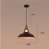 euroliteLED 40W L American Style Single Head Industrial Antique Wrought Iron Pendant Light