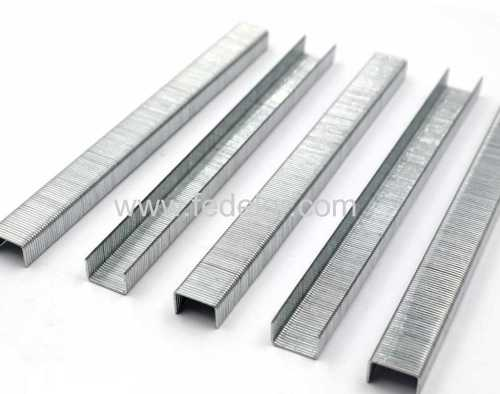 Fine Wire Staple 10F series