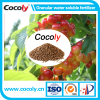 Cocoly granular water soluble fertilizer high quality