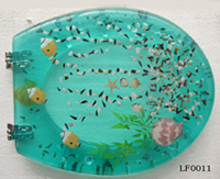 Transparent Resin Toilet Seat