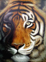 Animal oil paintings