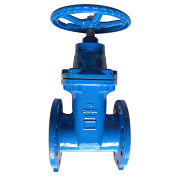 Resilient Seat Flanged Gate Valves
