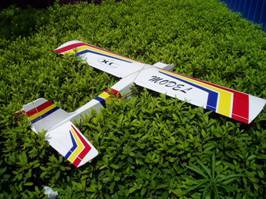 Arf Rc Model Plane (40 Tr)