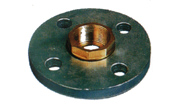 Copper-plated Female Steel Flange