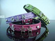 Pet Collar with Rhinestones