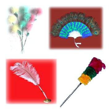 Feather Flower, Pen, Fan & Dusters