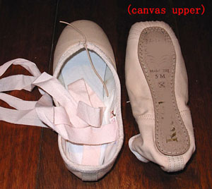 Pointe ballet shoes-Canvas upper