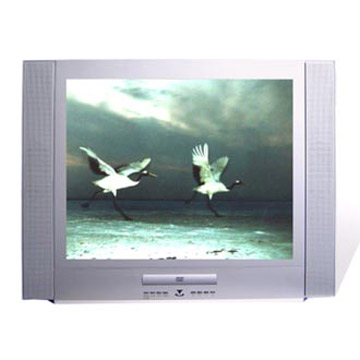 Color TV and DVD Combo