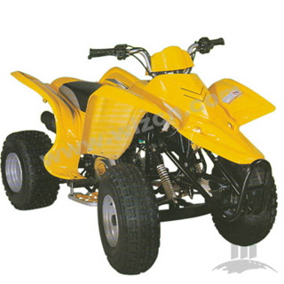 ATVs (Quad bike) (WZAT1102)